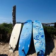 ditch plains surfboards